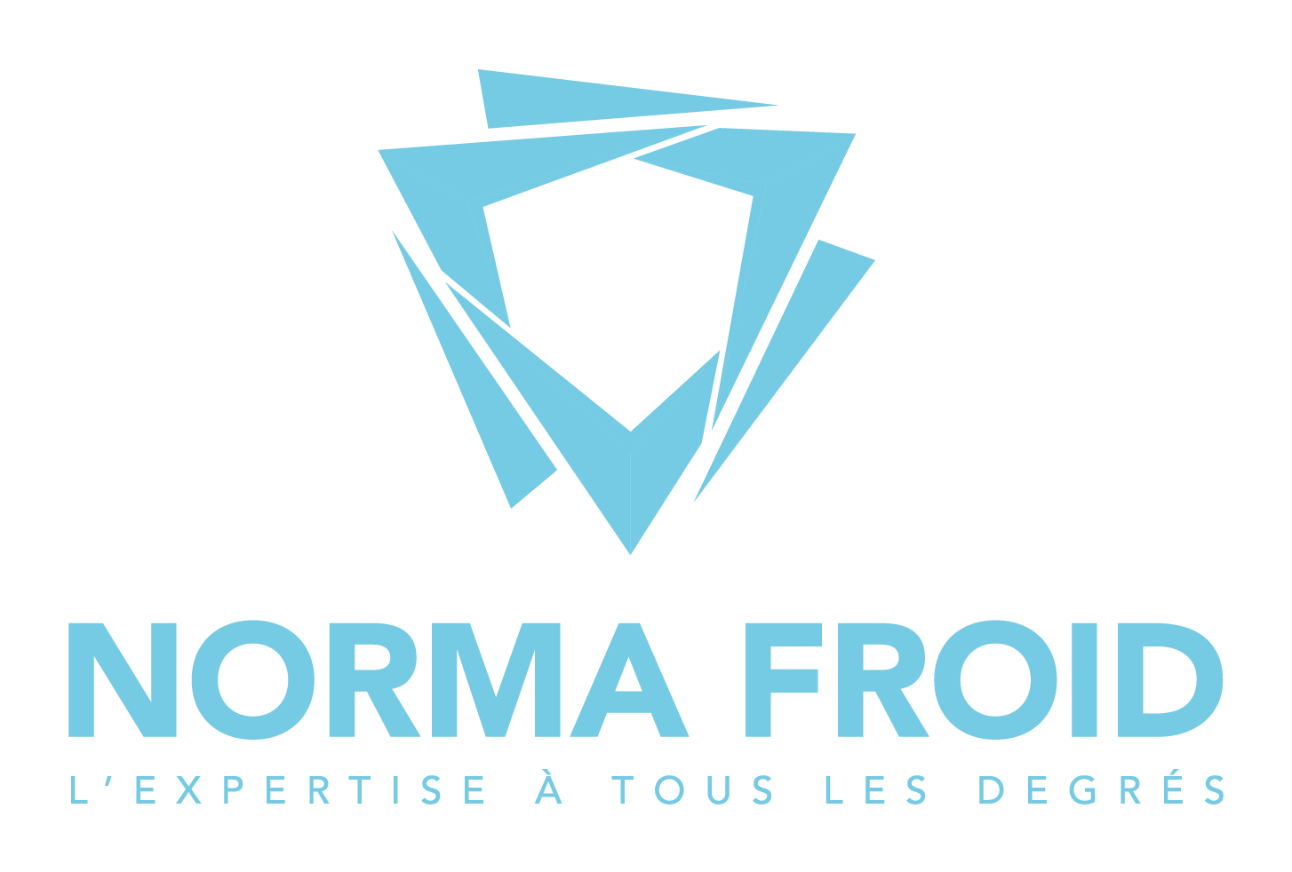 logo norma froid